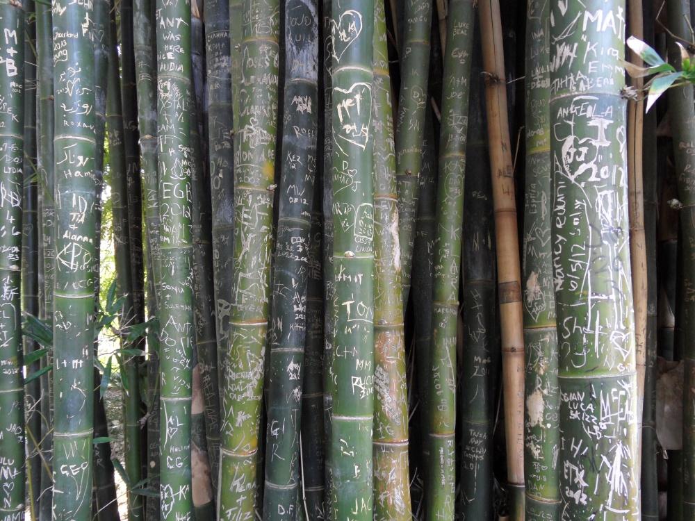 Liebesschwüre auf Bambus :-)
