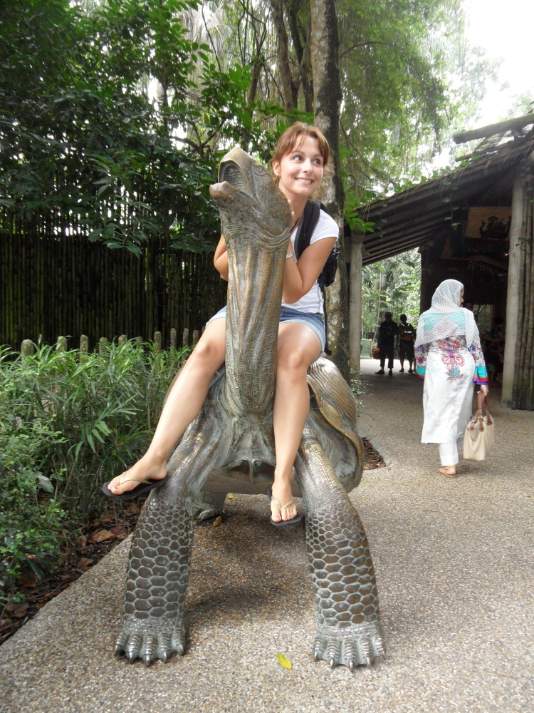 Komische Tiere im Zoo von Singapur ;)